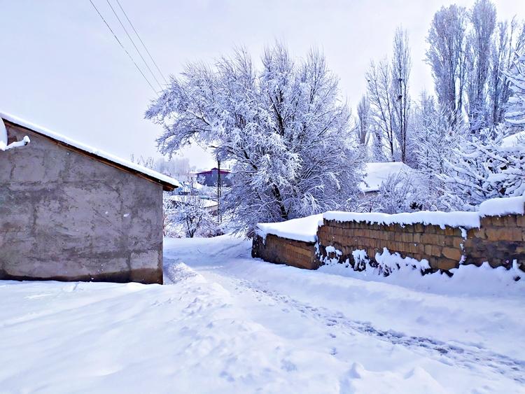 Patnos'tan Muhteşem Kar Manzaraları