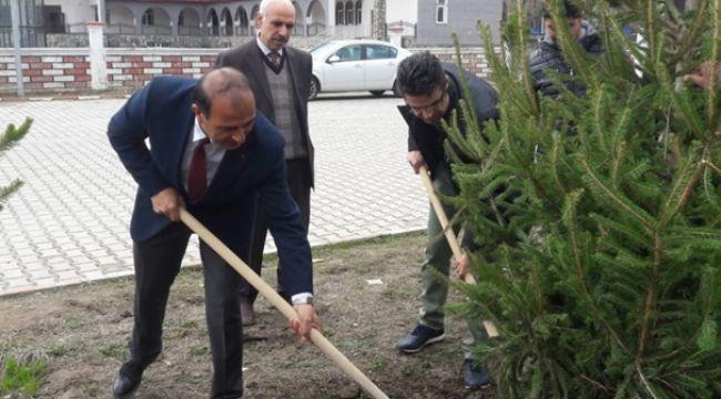 Patnos'ta 40 Ağaç Projesi