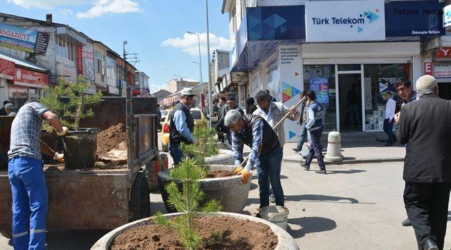 Patnos Belediyesi Ağaçlandırma ve Çiçeklendirme Çalışmalarını Başlattı.