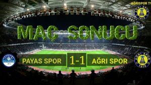TFF 3. Lig Payasspor - Ağrı 1970 Spor: 1-1