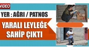 PATNOS'TA YARALI OLAN LEYLEĞE SAHİP ÇIKTI