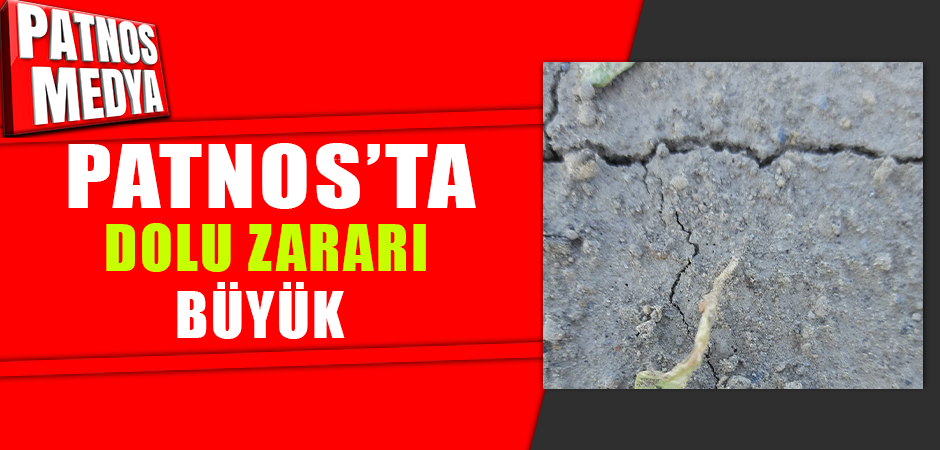 Patnos'ta dolu zararı büyük