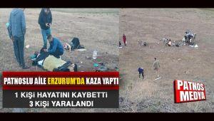 Patnoslu Aile Erzurum'da Kaza Yaptı